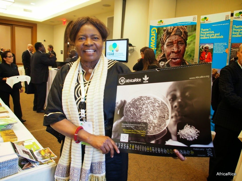 Prof. Oniang'o in a file photo captured on 25th September, 2014, at the The CGIAR Development Dialogues Forum in New York.