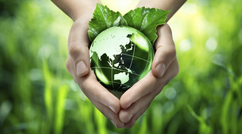 agricultural sustainability and biodiversity essay To define the sustainability of agriculture agricultural practices as they relate to the long-term stability of biodiversity cola sustainability essays.
